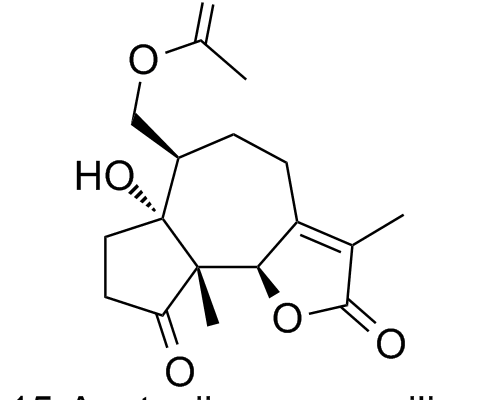 15-Acetoxiisocoronopilina