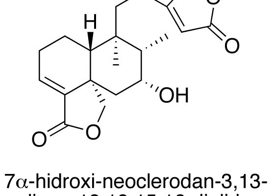 7α-hidroxi-neoclerodan-3