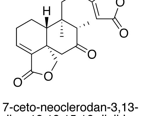 7-Ceto-neoclerodan-3