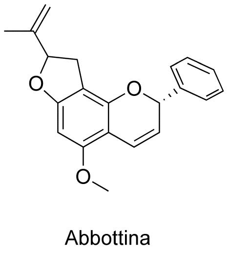 Abbottina