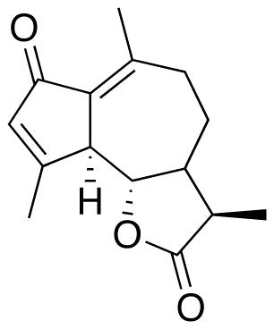 Achillina