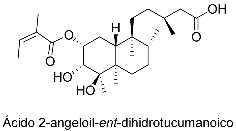Ácido 2-angeloil-ent-dihidrotucumanoico