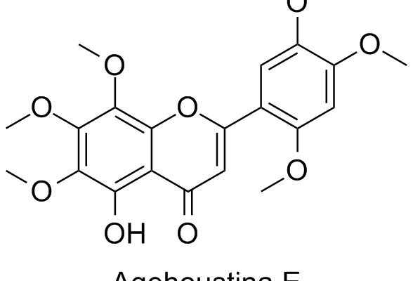 Agehoustina E