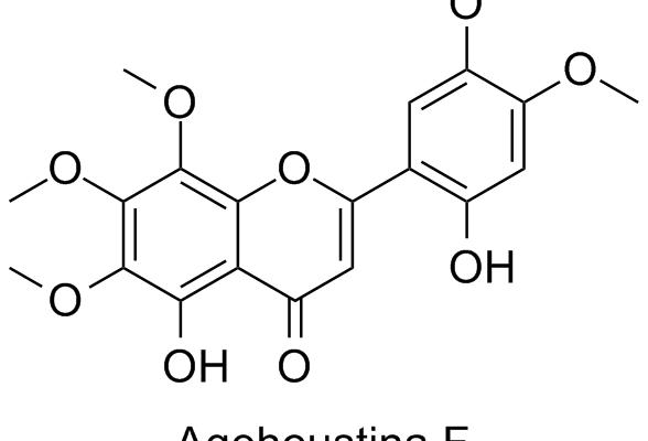 Agehoustina F
