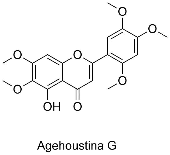 Agehoustina G
