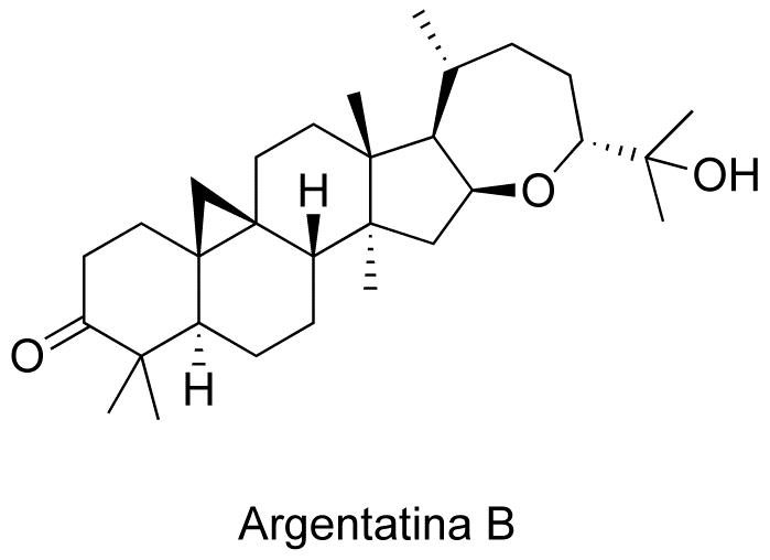 Argentatina B