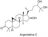 Argentatina C