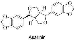 Asarinina