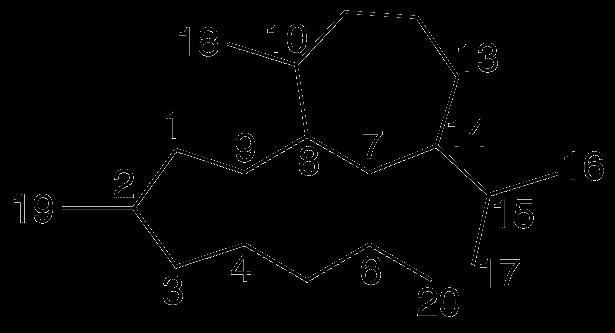 Crotofolano