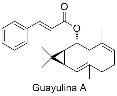 Guayulina A