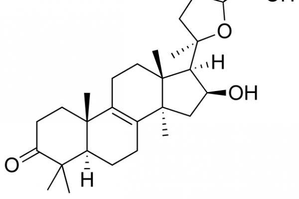 Incanilina