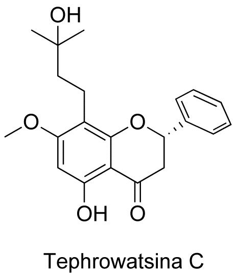Tephrowatsina C