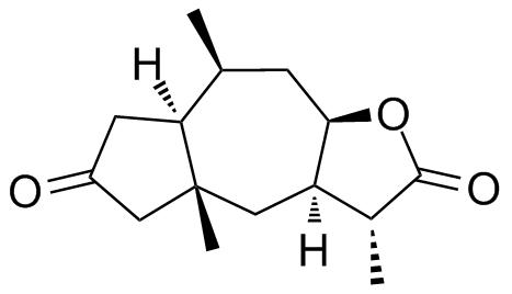 Tetrahedron23529_XVIII