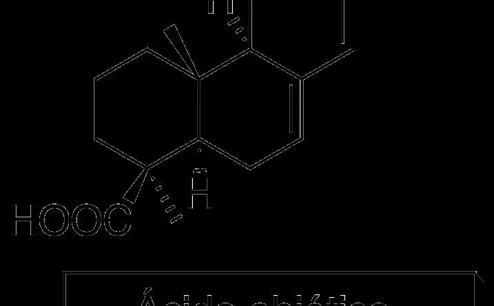 Ácido diterpénico