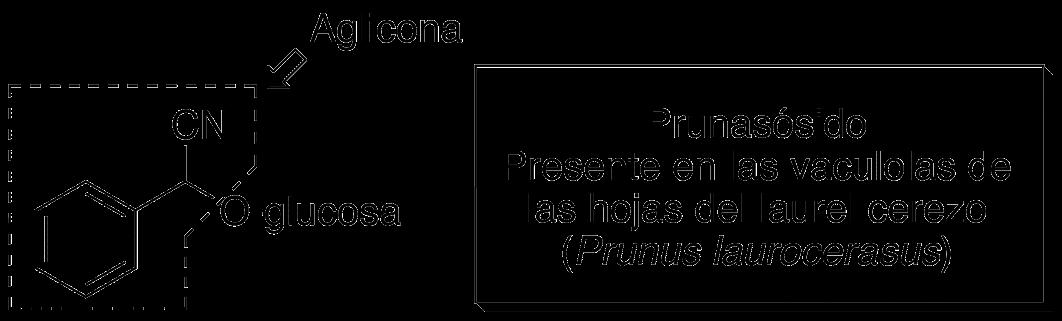Aglicona