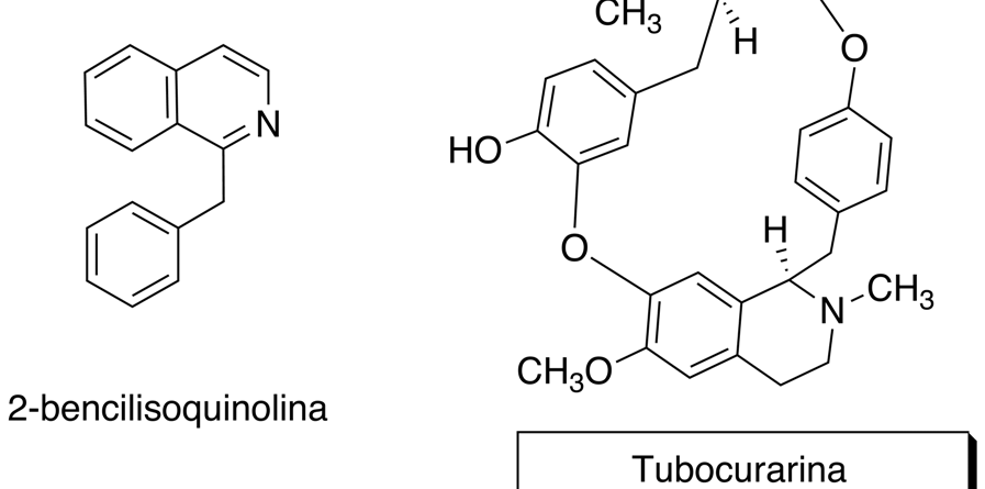 Alcaloide bisbencilisoquinolínico