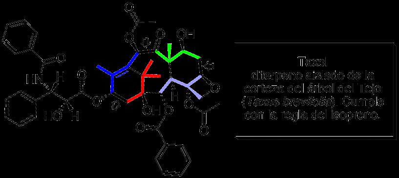 Diterpenoide