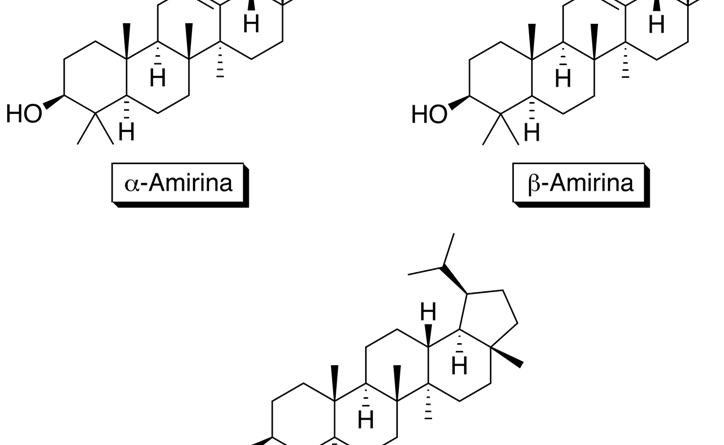 Saponina triterpénica pentacíclica