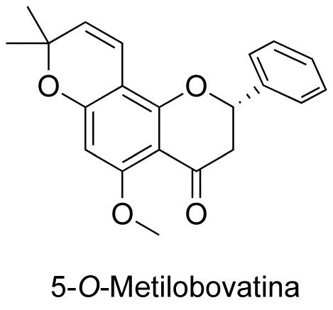 5-O-Metilobovatina