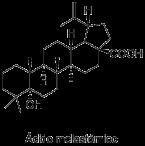 Ácido melastómico