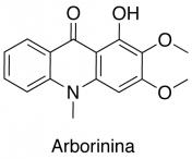 Arborina