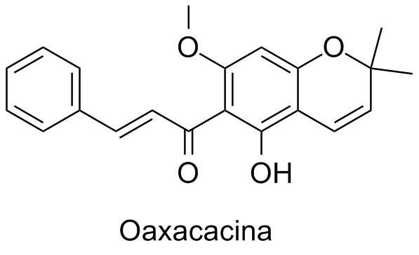 Oaxacacina