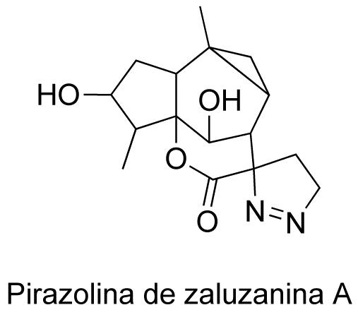 Pirazolina de zaluzanina A