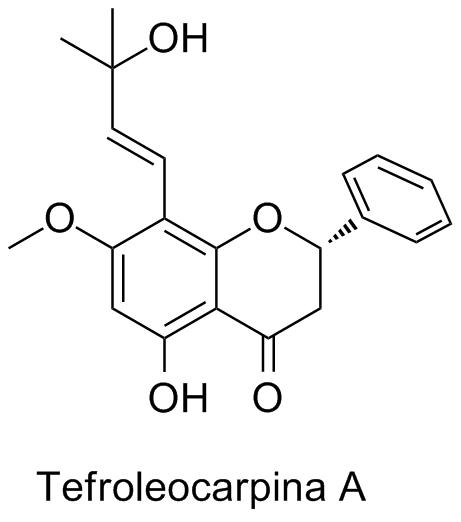 Tephroleocarpina A