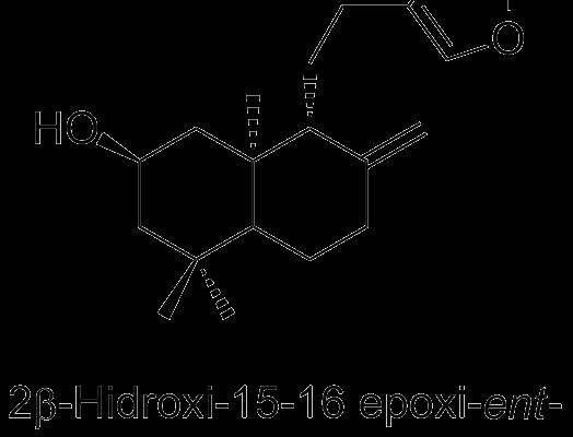 2β-Hidroxi-15-16 epoxi-ent-labd-8(17)