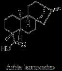 Ácido kaurenoico