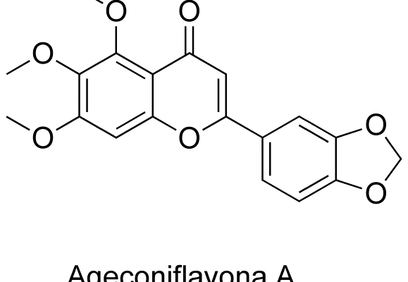 Ageconiflavona A