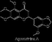 Agecorinina A