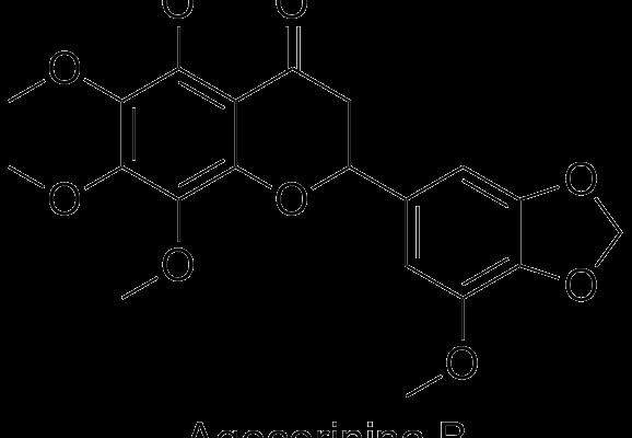 Agecorinina B