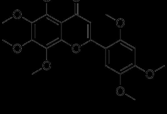 Agecorinina C