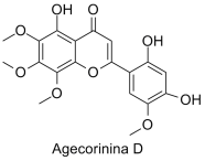 Agecorinina D