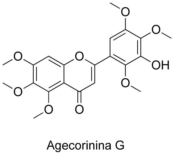 Agecorinina G