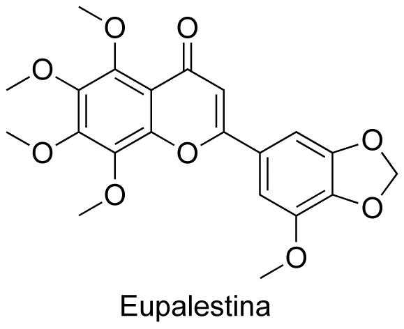 Eupalestina