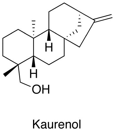 Kaurenol