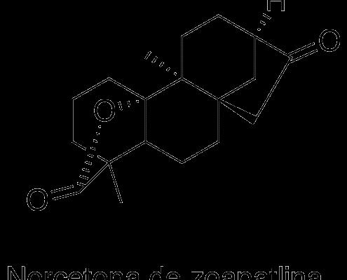 Norcetona de zoapatlina