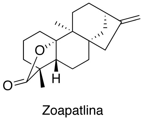 Zoapatlina
