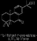 15-Hidroxi-7-oxo-abieta-8