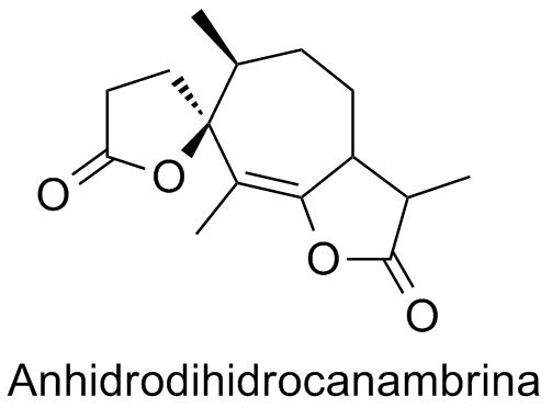 Anhidrodihidrocanambrina
