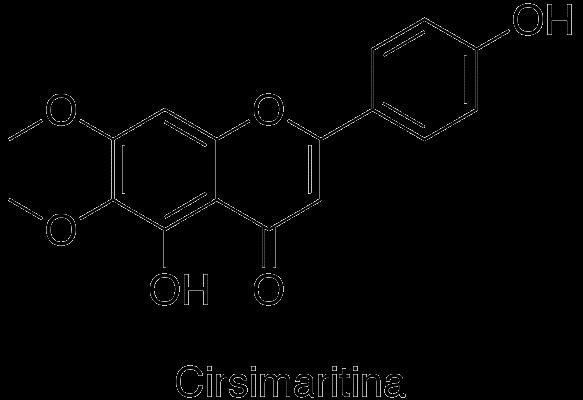 Cirsimaritina