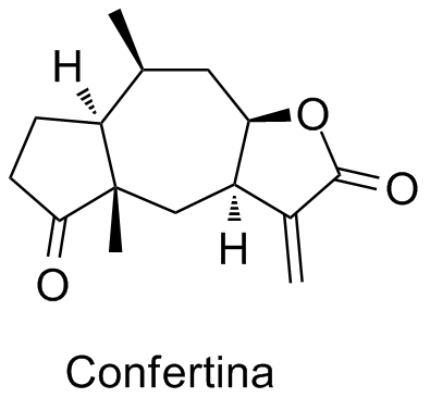 Confertina