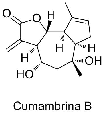 Cumambrina B
