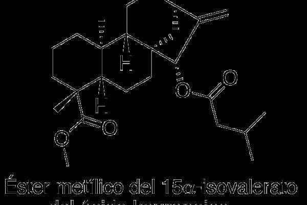 Éster metílico de 15α-isovalerato del ácido kaurenoico