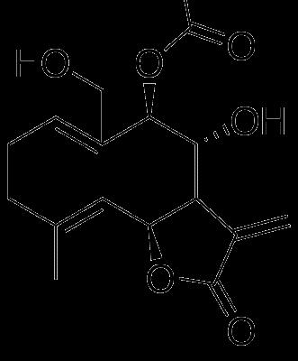 Gigantanólida C