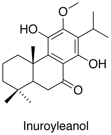 Inuroyleanol