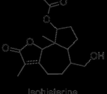Isohisterina