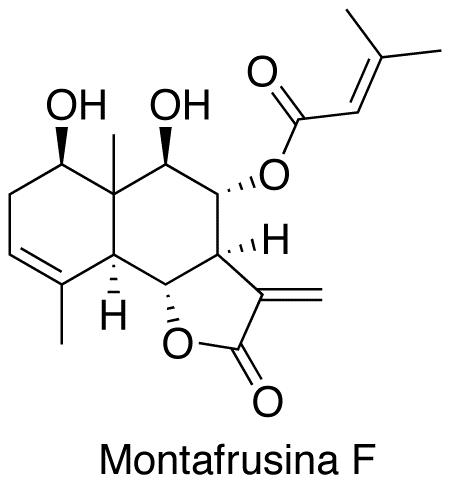 Montafrusina F